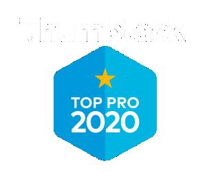 thumbtack top pro local moving company tampa
